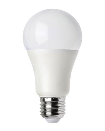 Ampoule e27 a65